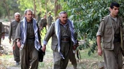 PKK'ya soğuk duş! Valilik duyurdu: Böylesi yıllardır görülmedi
