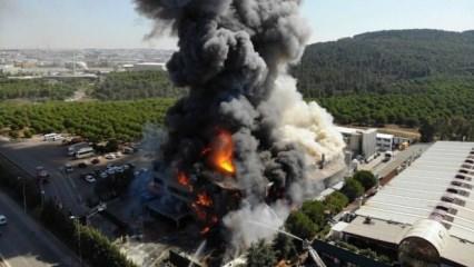 Sabiha Gökçen Havalimanı yakınlarında büyük yangın!