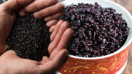Siyah pirincin faydaları nelerdir? Siyah pirincin diğer isimi nedir? Siyah pirinç nasıl tüketilir?