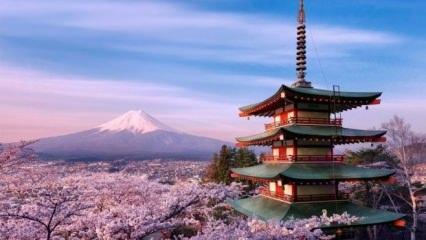 Teknoloji devi Japonya'nın başkenti Tokyo'da görülecek yerler