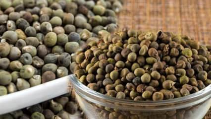 Bamya tohumunun faydaları | Bamya tohumu yemenin ne gibi yararı vardır?