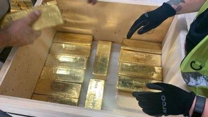 Kaçırdıkları 100 ton altını geri getirdiler