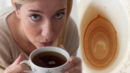 Bardak ve fincandan kahve lekesi nasıl çıkar?