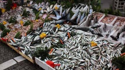 Çipura balığı nasıl ayıklanır? Çupra balığını ayıklamanın püf noktaları