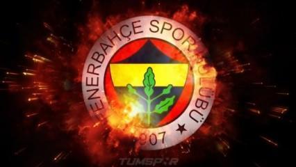Fenerbahçe'den TFF'ye 'erteleme' tepkisi!