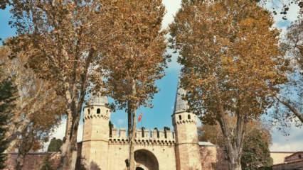 Topkapı Sarayı'nın tarihi, bölümleri ve hakkında bilinmeyenler