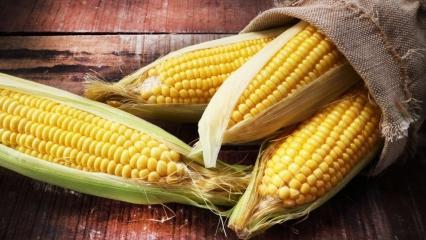Mısırın faydaları nelerdir? Haşlanmış mısırın suyu içilir mi?
