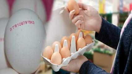 Organik yumurta nasıl anlaşılır? Yumurtanın kodları ne anlama gelir?