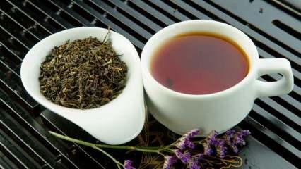 Mate çayı nedir? Mate çayının faydaları nelerdir? Mate çayı neye iyi gelir?