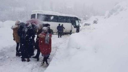 Meteoroloji uyarmıştı! Kar yağışı hayatı felç etti