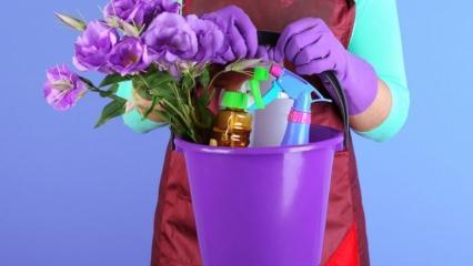 Perşembe günü ev temizliğinin sırları nelerdir? Kandillerde ev temizliği