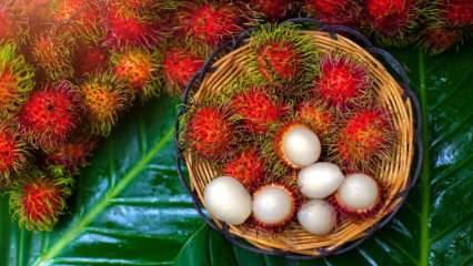 Rambutan nedir? Rambutan meyvesinin faydaları nelerdir? Rambutan nasıl yenir?