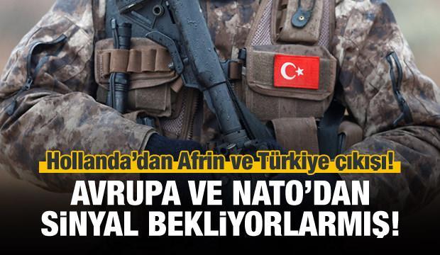 Hollanda'dan Türkiye ve Afrin çıkışı!