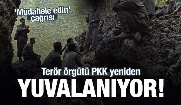 Terör örgütü PKK yeniden yuvalanıyor