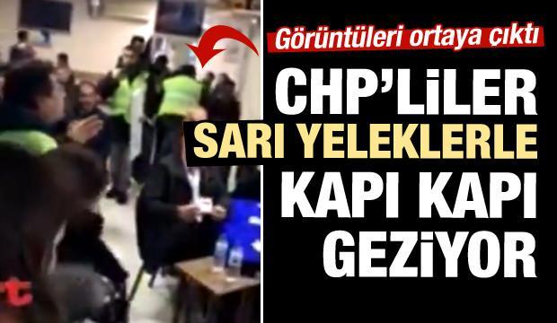 Türkiye'de ortaya çıktılar! Kapı kapı geziyorlar
