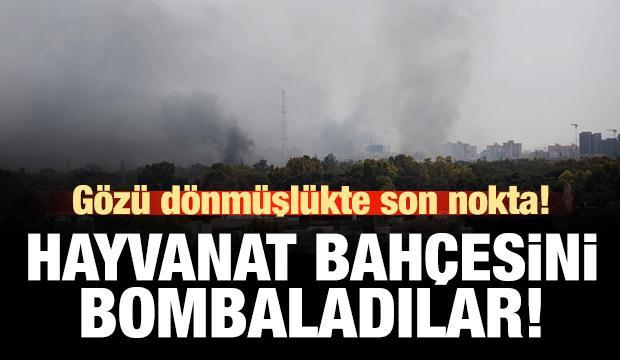 Hayvanat bahçesini bombaladılar!